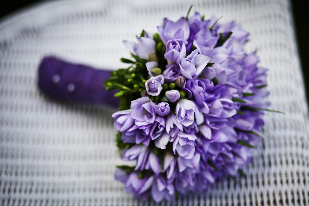 hinh nen hoa dep cho may tinh (9)